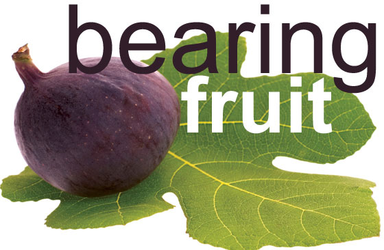 Bearing Fruit and the Christian Life