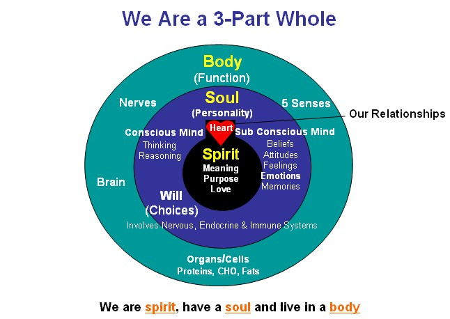 Spirit, Soul, Body, Emotions, Will and Mind - Bible. A Christian perspective & view